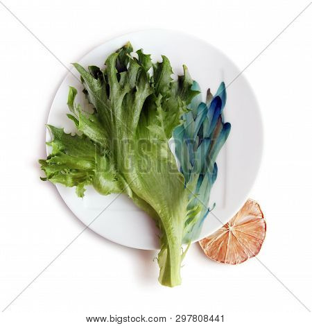 Still Life With Fresh Green Lettuce Leaf On The Beautiful Plate And Dried Slice Of Lemon Against Whi