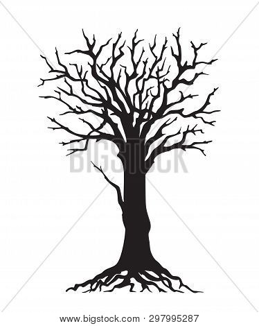Black Silhouette Illustration Tree With Roots Without Leaves. Icon Tree Isolated On White Background