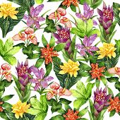 Hand drawn seamless pattern with tropical plants Tillandsia cyanea, Anthurium, Aechmea, Calathea saffron, Bromeliaceae and Aglaonema on white background. Watercolor botanical illustration poster