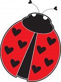 A cute lady bug with hearts, instead of dots on its red back. poster