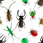 Cartoon seamless pattern with colorful insects. Bugs repetitive background. Vector illustration for your graphic design. poster