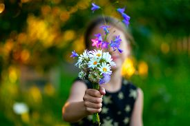 Little Cute Girl With Bouquet Of Wildflowers. Child Gives Flowers To Mom. Close Up View On The Hand
