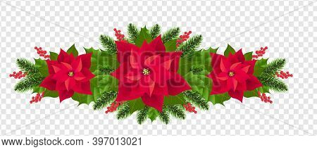 Red Poinsettia Isolated Garland With Fir Tree Transparent Background With Gradient Mesh, Vector Illu