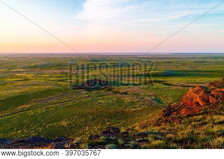 Wildflowers Blooming In Wild Spring Steppe. Colorful Flowering Field With Forb.