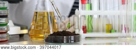 Woman In Laboratory Drips Into Soil With Sprout. Indicator For Determining Reaction Medium. Most Acc