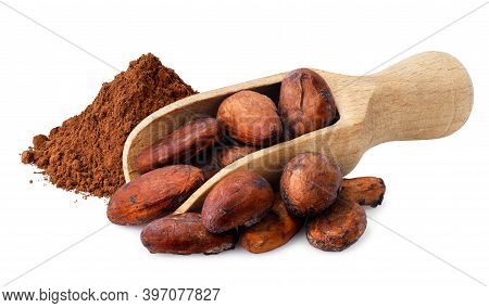 Raw Cacao Beans In Wooden Scoop And Powder Near Isolated On White Background