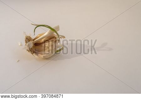 Old Garlic With Light Background. Not Full (incomplete) Clove. Copy Space For Text.
