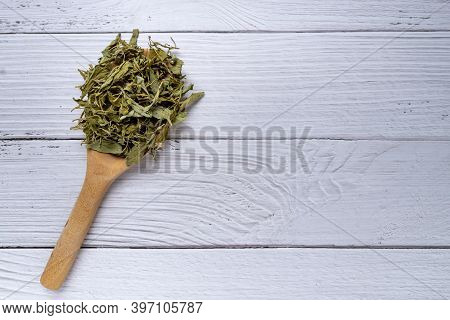 Pile Of Dried Stevia Rebaudiana Bertoni In Wooden Spoon On White Wood Background. Natural Sweetener