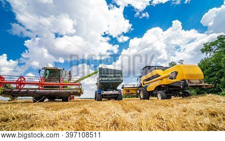 Heavy Agricultural Machinery In Field. Harvesting Season. Yellow Wheat On Blue Sky Background.