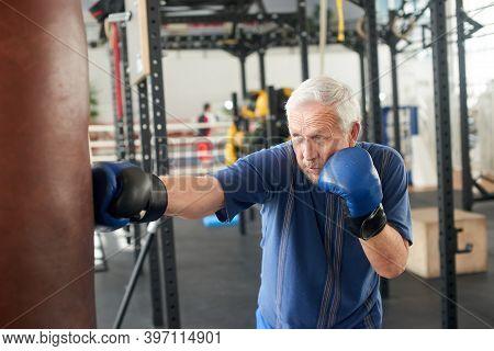 Senior Man Hitting Punching Bag In Boxing Studio. Old Man In Gloves Beats Punching Bag In Gym.