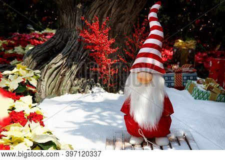 Singapore, Singapore-november 25, 2019: Gardens By The Bay, Flower Dome, Beautiful Christmas Decorat