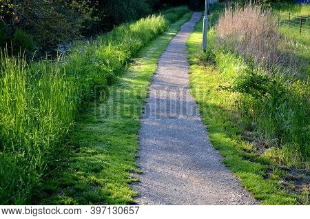 Gravel Threshing Path In City Park Light Sand Green Lawn And Trees Trunks Slight Bend Plain