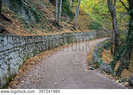 Winding Road In An Autumn Landscape Between Trees