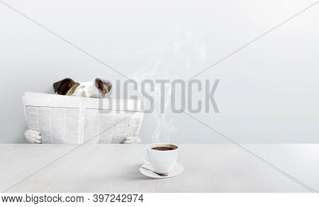 Bulldog In A White Room Reading Newspaper With A Hot Cup Of Coffee.
