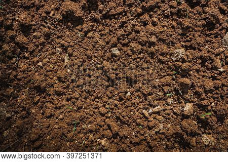 Textured Fertile Soil  For Cultivation As Background. The Potting Soil Or Peat Is Suitable For Garde