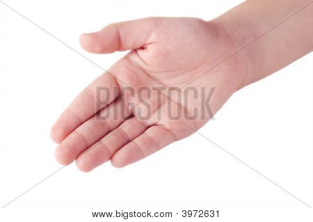 Child'S Right Hand Palm