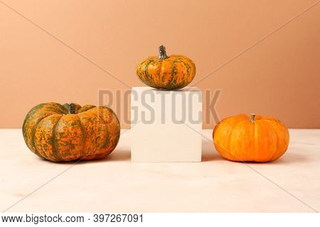 Different Types Of Mini Pumpkins On The Geometrical Podium.concept Of The Leadership And Uniqueness.