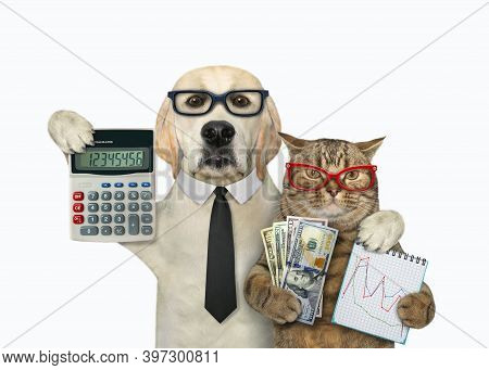 A Dog With A Cat Are Businessmen. They Are Holding A Calculator, Financial Charts And Dollars. White