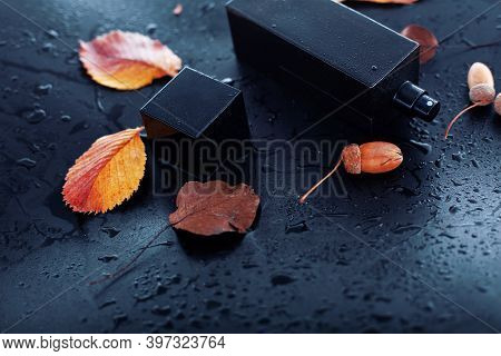 Male Perfume And Autumn Leaves On Black Background