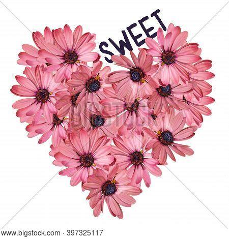 Pink Floral Heart Sticker Gazania Flower On White Background