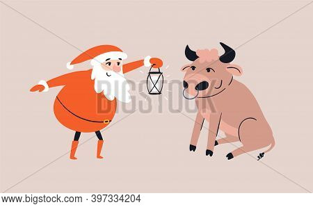 Cartoon Santa Claus Meets A Bull Sitting In Front Of Him. Smiling Santa Lights Up A Cute Bull With A