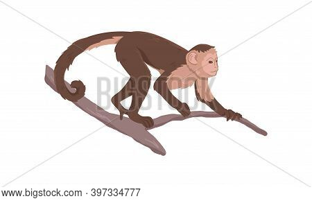 Icon Of Monkey On Tree Branch. Big Ape With Large Ears, Brown Fur And Light Face. Wild African Monke