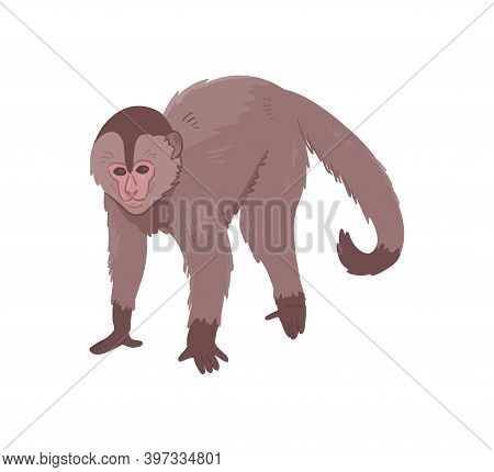 Icon Of Monkey. Big Ape With Large Ears, Brown Fur And Light Face. Wild African Monkey. Zoo Or Wildl