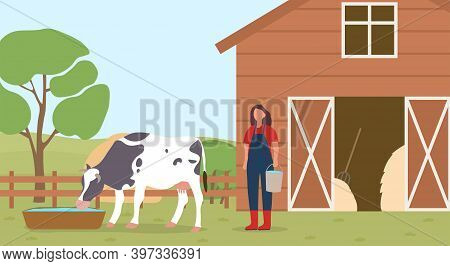 Farmer Working On Countryside Farm. Woman Taking Care And Watering Of Domestic Cow. Rural, Ranch, Co