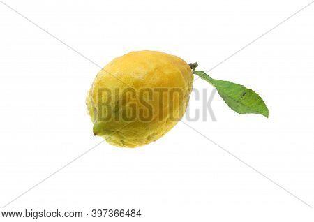 Close Up On Fresh Lemon Isolated On White Background