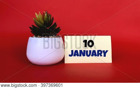 January 10 On A Yellow Sticker.next To It Is A Pot With A Flower On A Red Background .beginning Of Y
