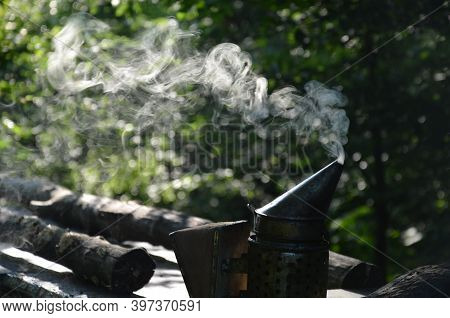Beekeeper's Smoker Emitting A Lot Of Fragrant Smoke From Rotting Wood In The Darkness Of The Forest