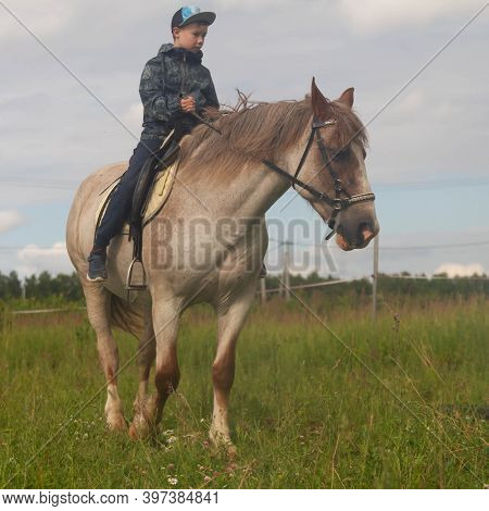 A Teenager In A Jacket Rides A Gray Horse In A Paddock In A Meadow. Training A Child On A Horse. The