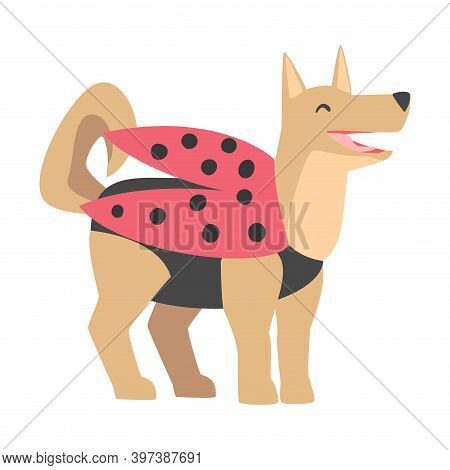 Cute Dog In Ladybug Costume, Funny Pet Animal Character Dressed In Festive Costume For Masquerade, C