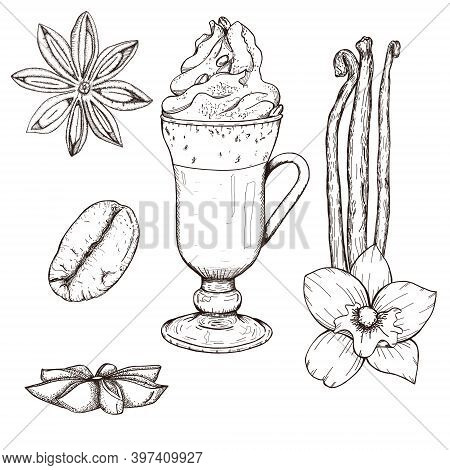 Latte Coffee Drawing With Cream, Cream Coffee, Coffee Bean. Vanilla Sticks And Flower, Cardamom