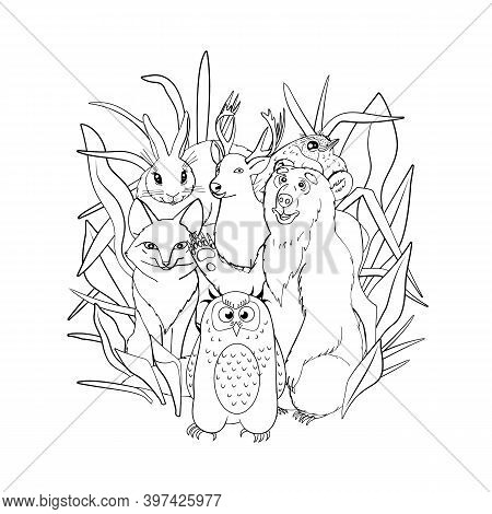 Kids Coloring Page With Cute Woodland Animals, Fox, Deer, Owl, Bunny, Bear. Isolated On White Backgr