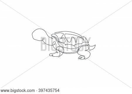 One Single Line Drawing Of Big Cute Tortoise In Galapagos Island Vector Illustration. Protected Spec