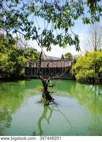 Hidden Teahouse At The Black Dragon Pool In Lijiang, China