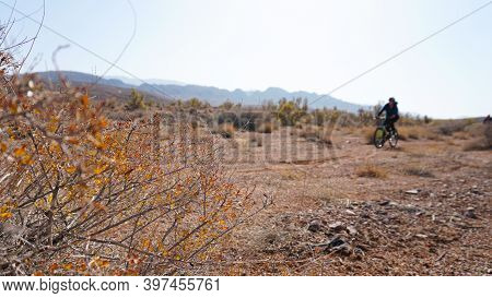 Autumn Landscape Of The Steppe And A Cyclist. View Of Dry Bushes, Small Trees, Sand With An Orange-r