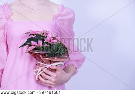 Girl In A Pink Dress Holding A Bouquet Of Christmas Flowers On A White Background
