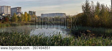 The Lake On The Outskirts Of The City, In The Pond Swim Ducks And On The Edge Grows Reeds.