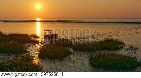 Evening At North Sea In Wattenmeer National Park,east Frisia,lower Saxony,germany
