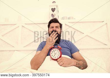 Stressed Man Yawning Takes Alarm Clock. Too Early. Sleepy Man Holding Alarm Clock In Bed. Bearded Ma