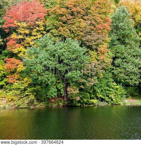 Autumn Park With Beautiful Trees And Reflection In The Lake