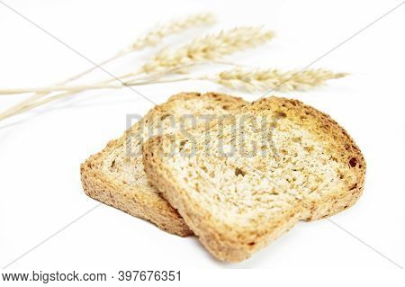 Two Crusty Bread Toast Slice Next To Ears Of Wheat On White Background. Healthy Food Concept