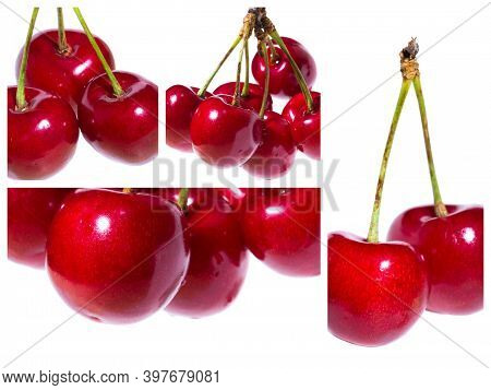 Collge Of Organic Sweet Cherries Isolated On A White Background