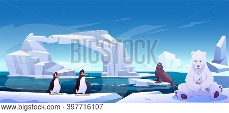 Wild Animals Sitting On Ice Floes In Sea, White Bear Holding Fish, Penguins And Seal. Antarctica Or