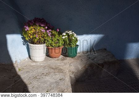Flowerpots Beside The Entry Of Traditional House Of La Garganta Village, Ambroz Valley, Caceres, Ext