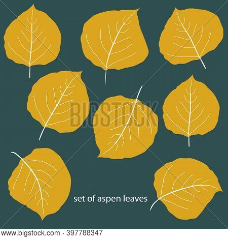 Vector Set Of Eight Differently Shaped Golden Aspen Leaves. Hand Drawn Isolated Foliage Motifs In Fa