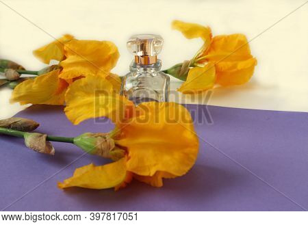 A Bottle Of Eau De Toilette Among Yellow Irises On A Lilac Background, Side View, Close - Up-the Con