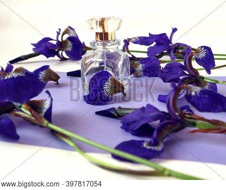 A Bottle Of Eau De Toilette Among Blue Siberian Irises On A Lilac Background, Side View, Close - Up-